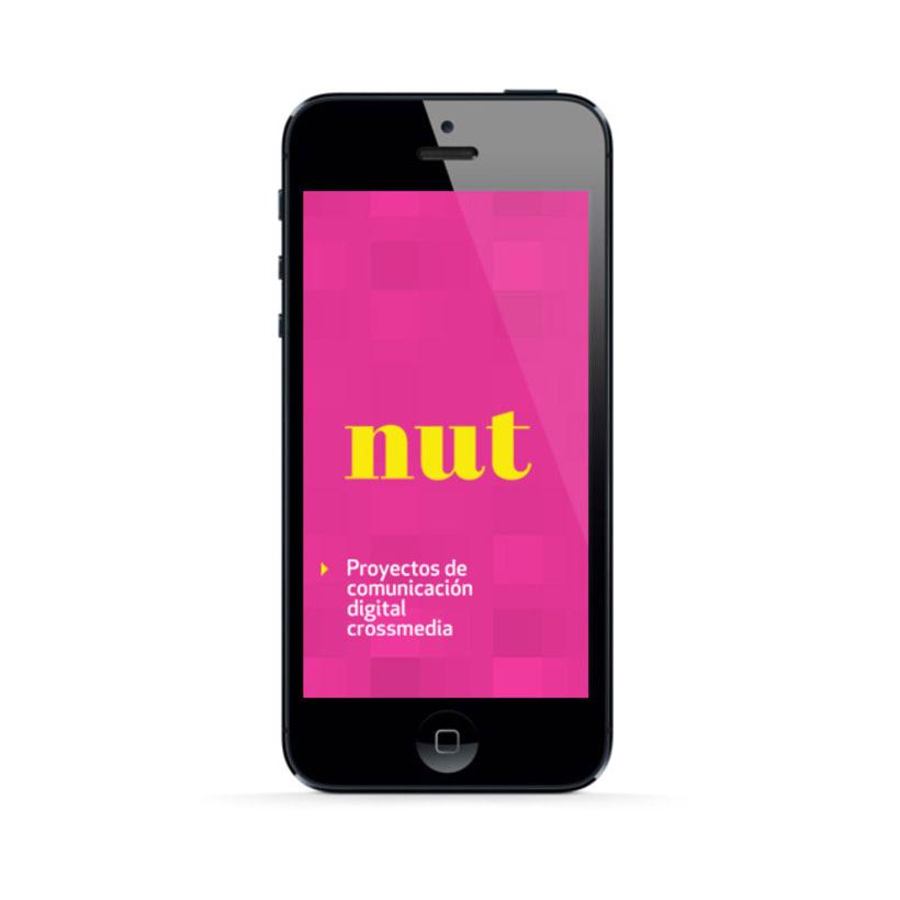Nut 10