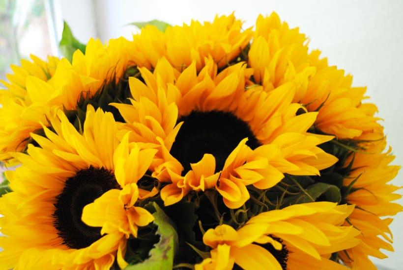 Fotografía floral y decoración 4