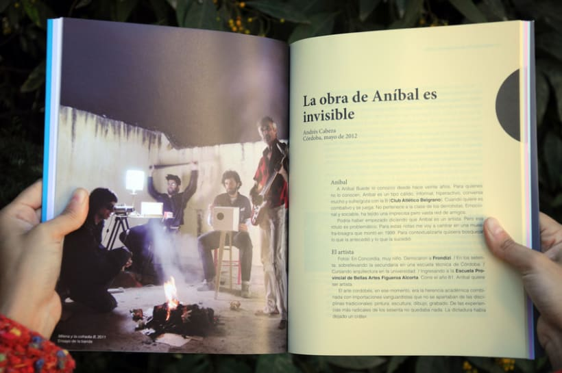 Colección 1.330.022, etc - Aníbal Buede  7