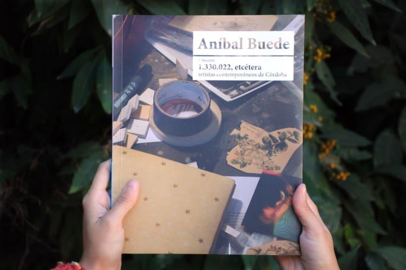 Colección 1.330.022, etc - Aníbal Buede  5
