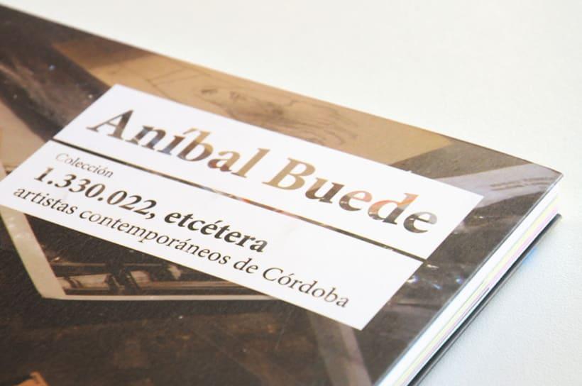 Colección 1.330.022, etc - Aníbal Buede  2