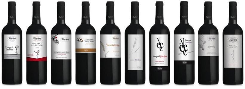 Terranoble Vineyard Selection - Bocetos 1