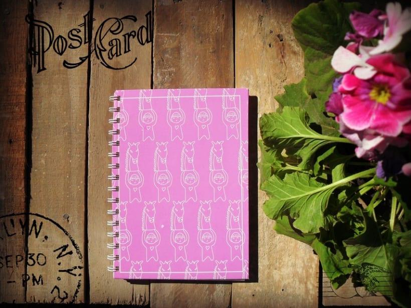 Agendas/cuadernos viajeros/cuadernos dibujo 3