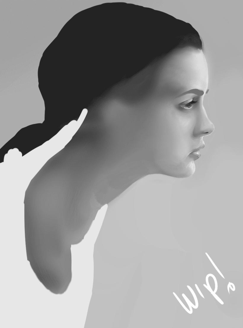 perfil 2