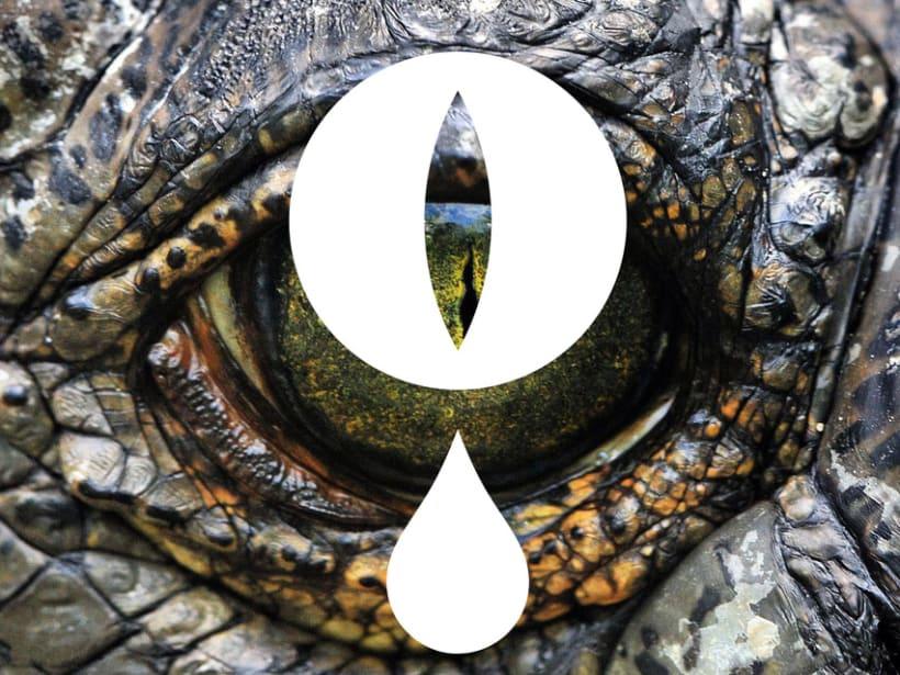 Lágrimas de cocodrilo 1