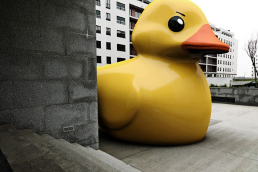 Rubber Ducks 1