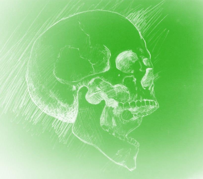 Skull 12
