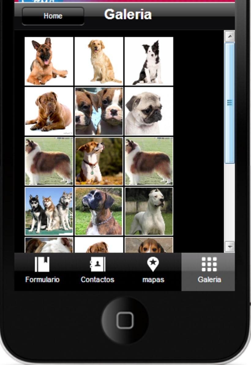 Aplicación-Android 5