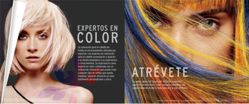 Aveda - Full Espectrum Color banner 2