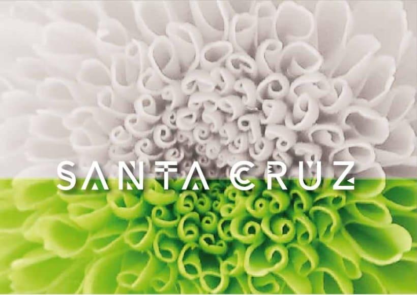 Santa Cruz de Bolivia 8