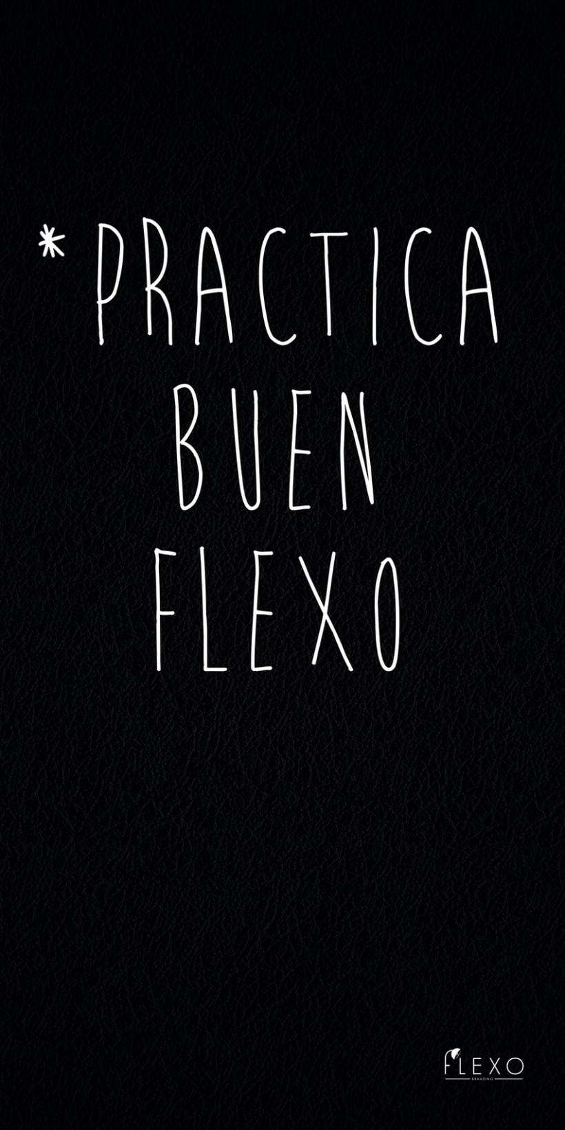 PRACTICA BUEN FLEXO 1