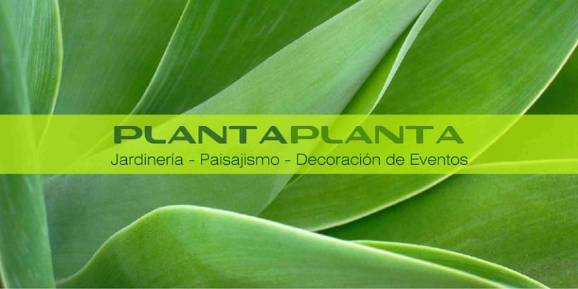 Plantaplanta 5