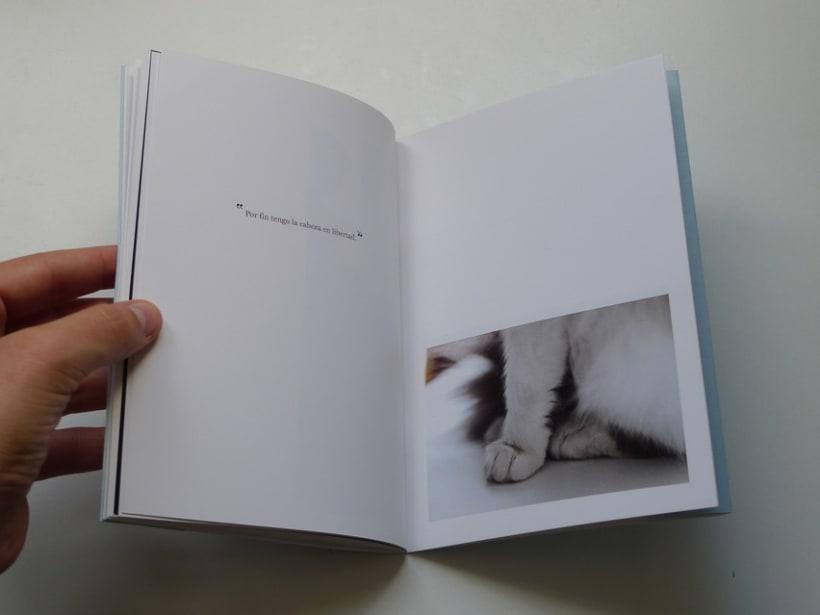 Miau 15