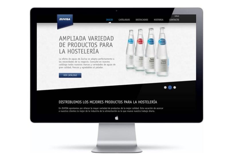 Zuvisa. Diseño web 2
