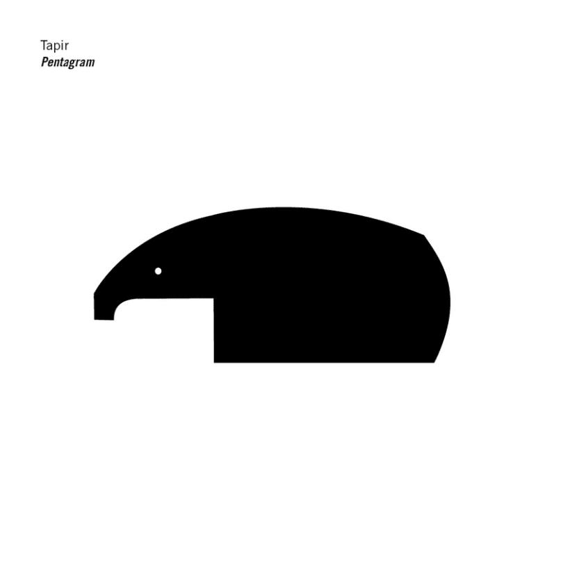 Síntesis Animales 9