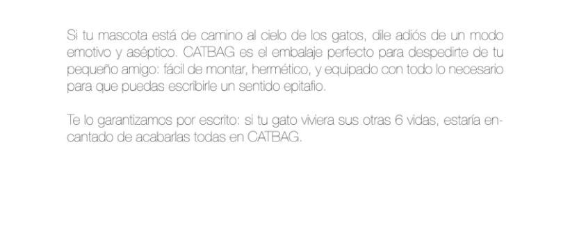 CATBAG 1