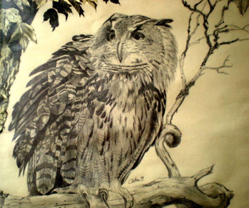 Ilustración animal 23