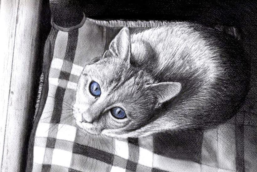 Ilustración animal 11