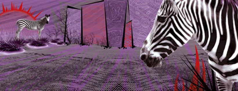 cebras horizontal 2
