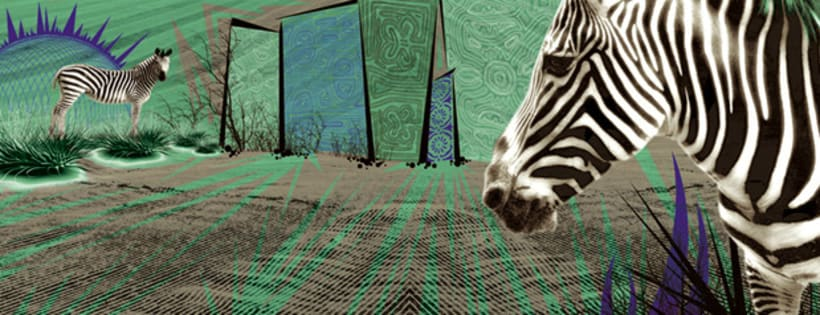 cebras horizontal 5