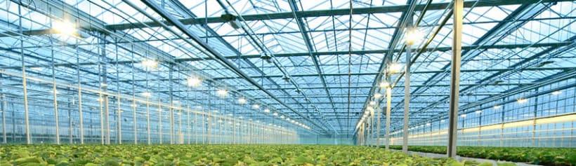 Green Biosystems 1