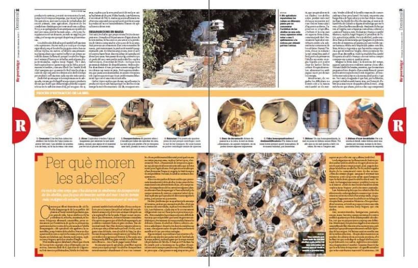 Diari de Girona articles 3
