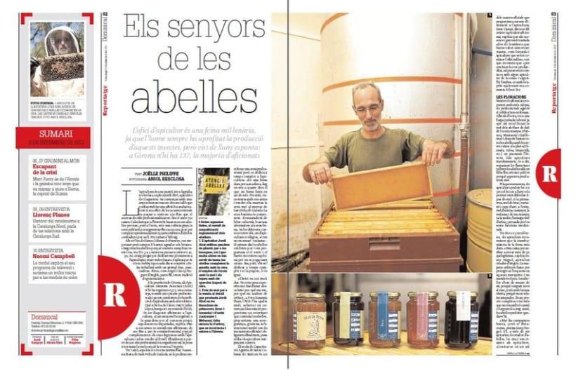 Diari de Girona articles 2