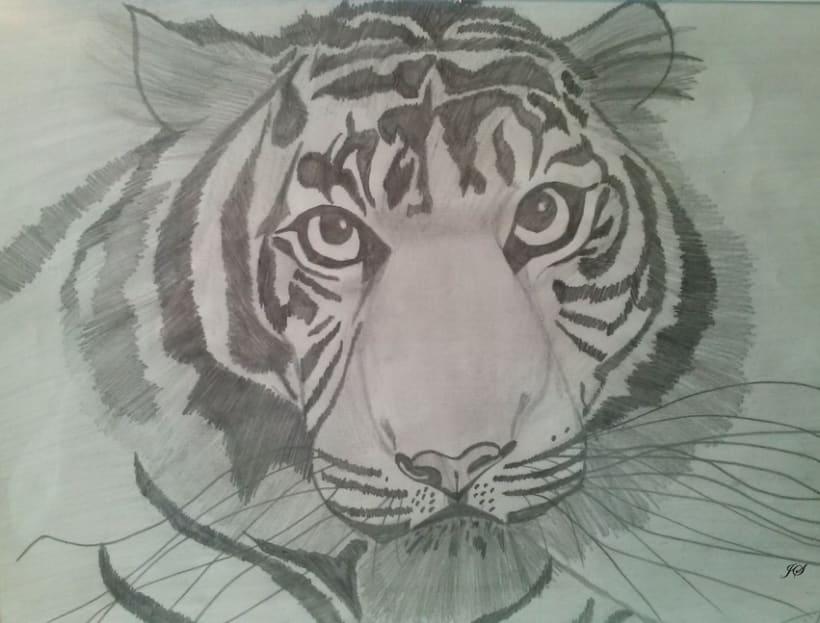 Dibujos a lápiz 2