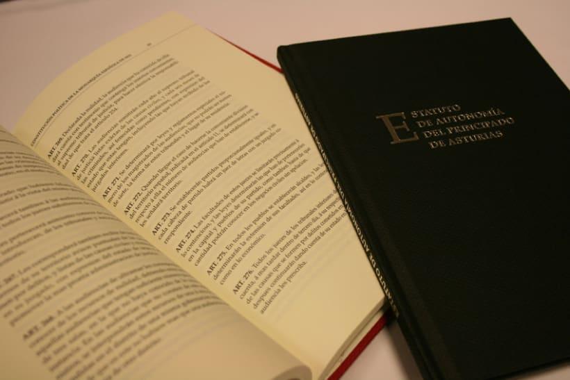 Libros Constitución y Estatuto 4