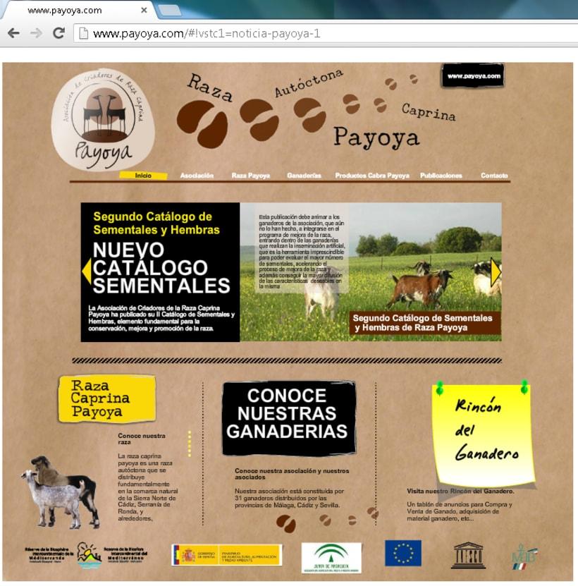 Payoya (Asociación de Criadores de Raza Caprina Payoya) 9