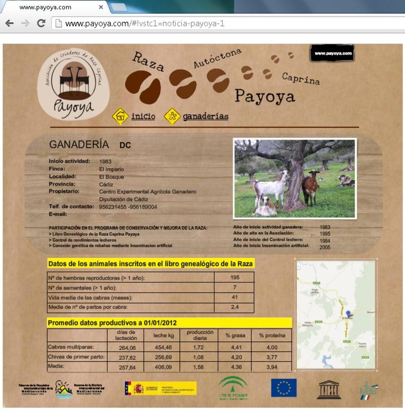 Payoya (Asociación de Criadores de Raza Caprina Payoya) 12