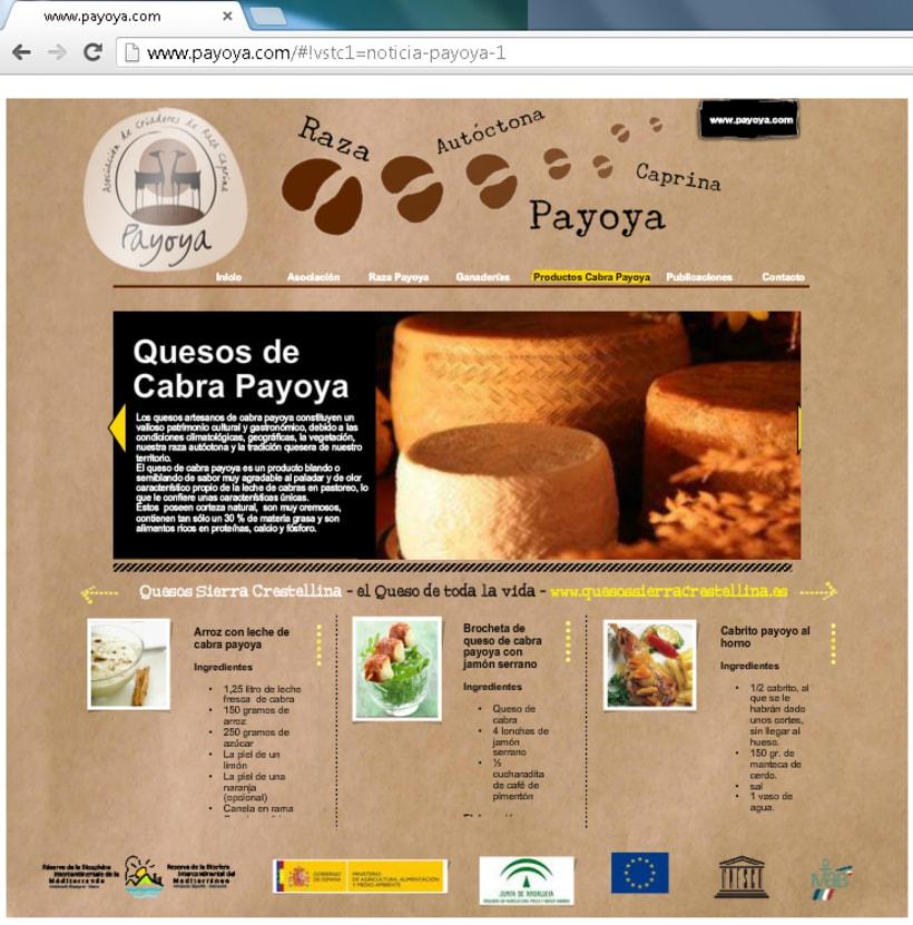 Payoya (Asociación de Criadores de Raza Caprina Payoya) 10