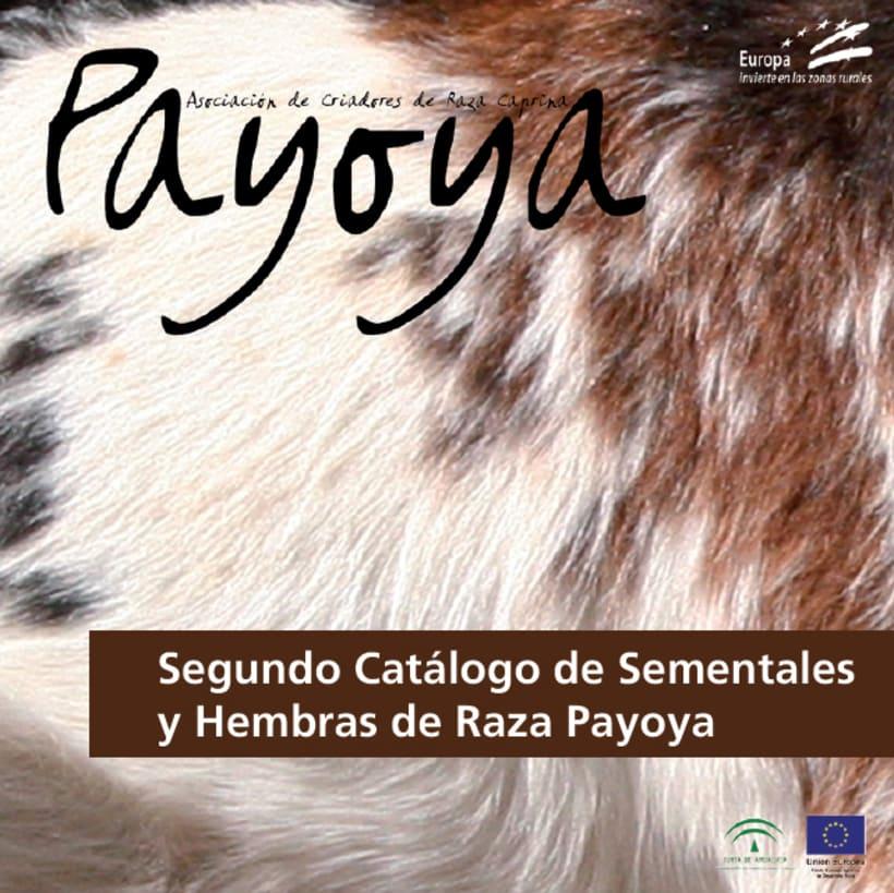 Payoya (Asociación de Criadores de Raza Caprina Payoya) 3