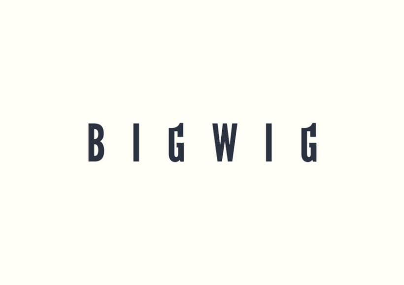 Bigwig Quality Consulting 2