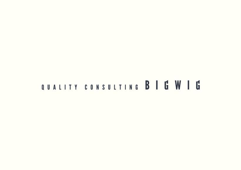 Bigwig Quality Consulting 4