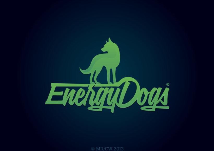 2013 Logos 15