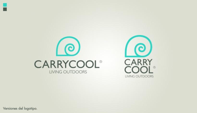 Identidad corporativa Carrycool 1