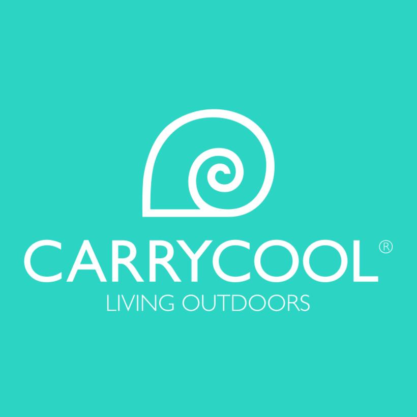 Identidad corporativa Carrycool 0