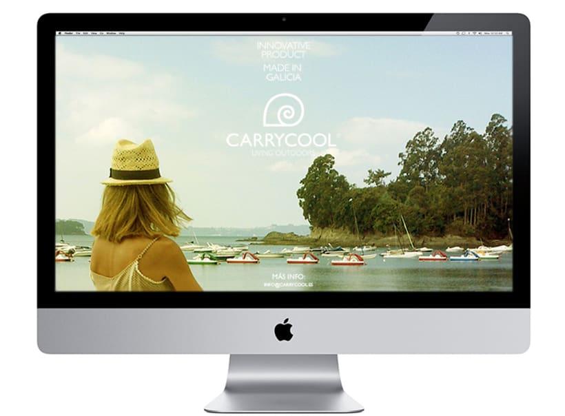 Identidad corporativa Carrycool 2