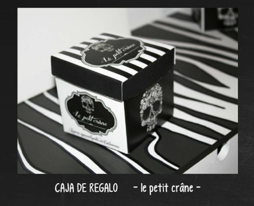 Diseño packaging 2