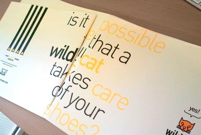 Wildcat | Branding, dirección de arte, catálogo de producto -1