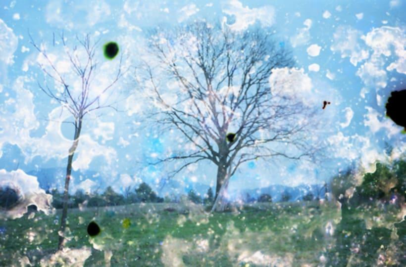 Serie de árboles 3