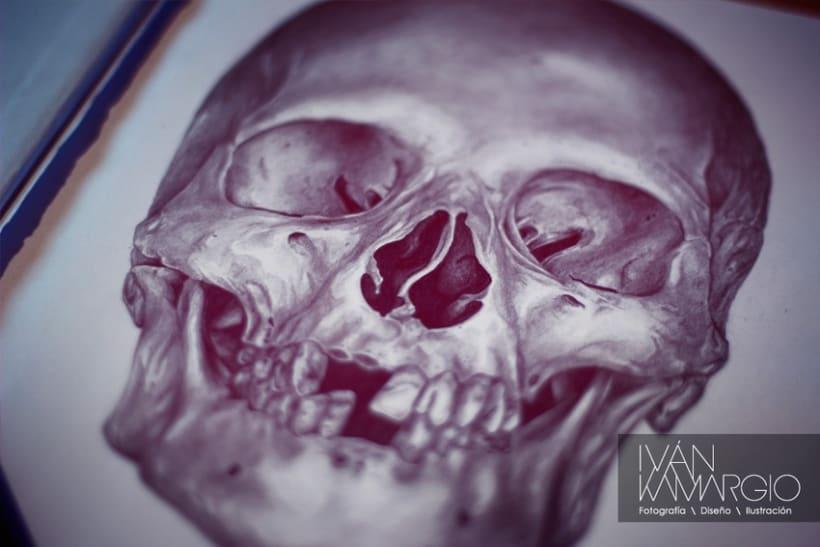 Ilustracion inicio 2013 6