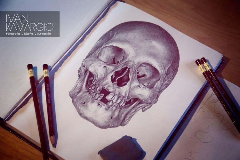 Ilustracion inicio 2013 7