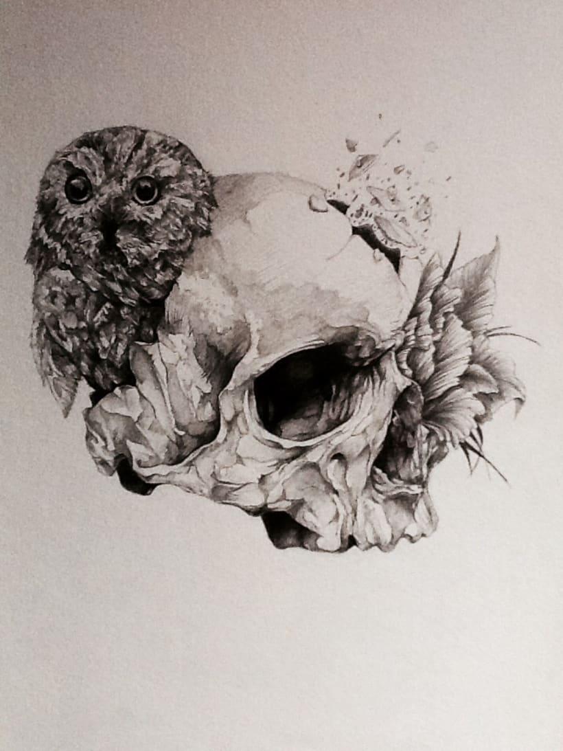 Ilustraciones en proceso 2013 9