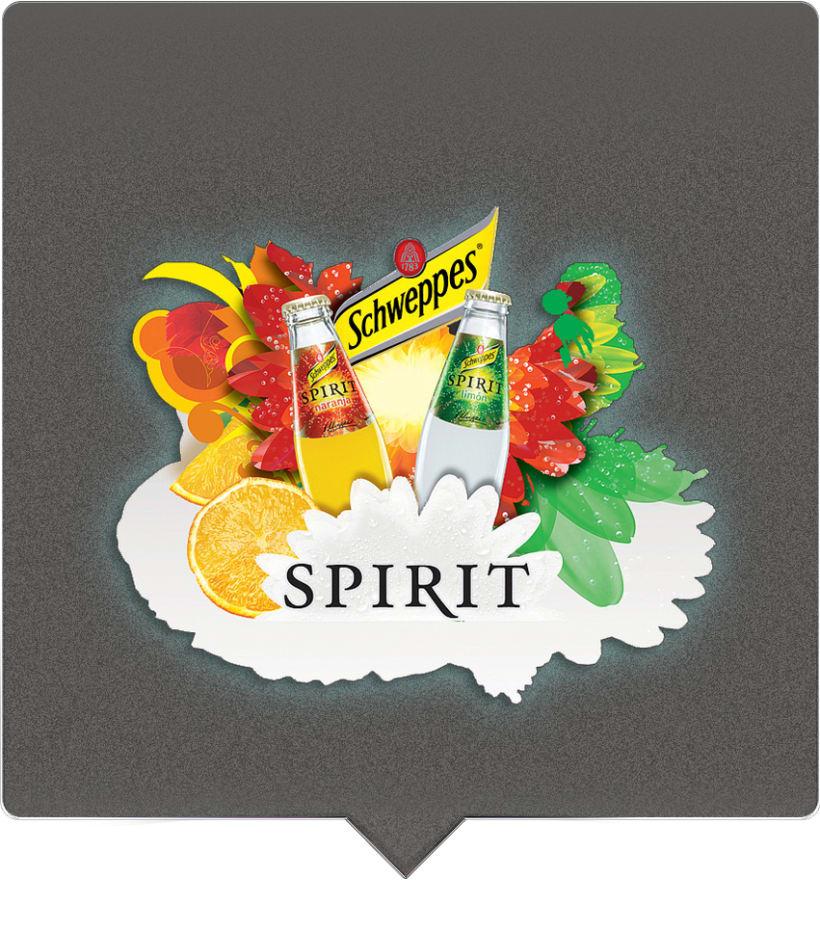 Spirit® 1