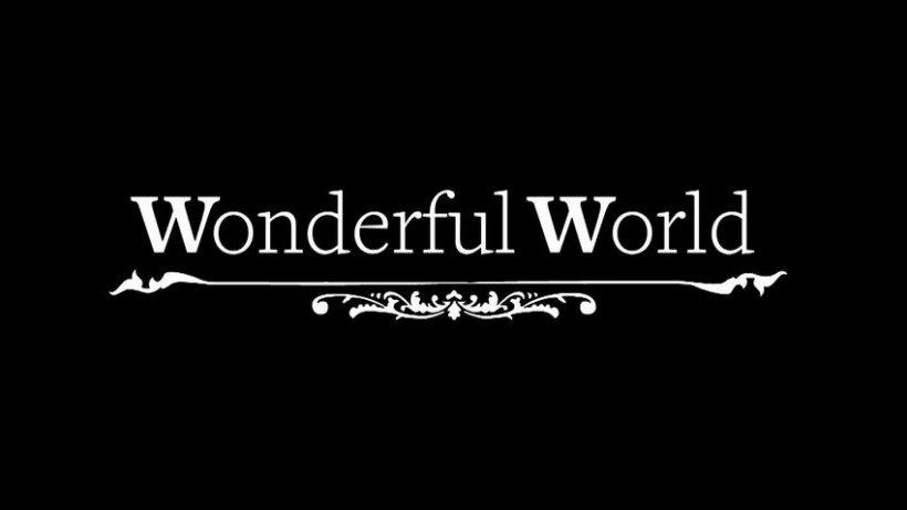 Wonderful World 0