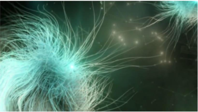 sinapsys 1