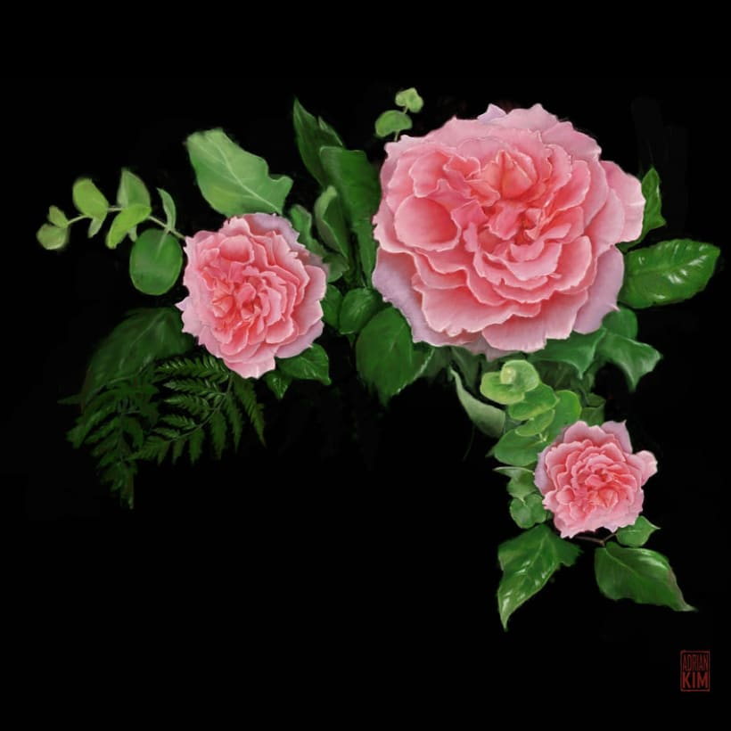 Pink Roses 0