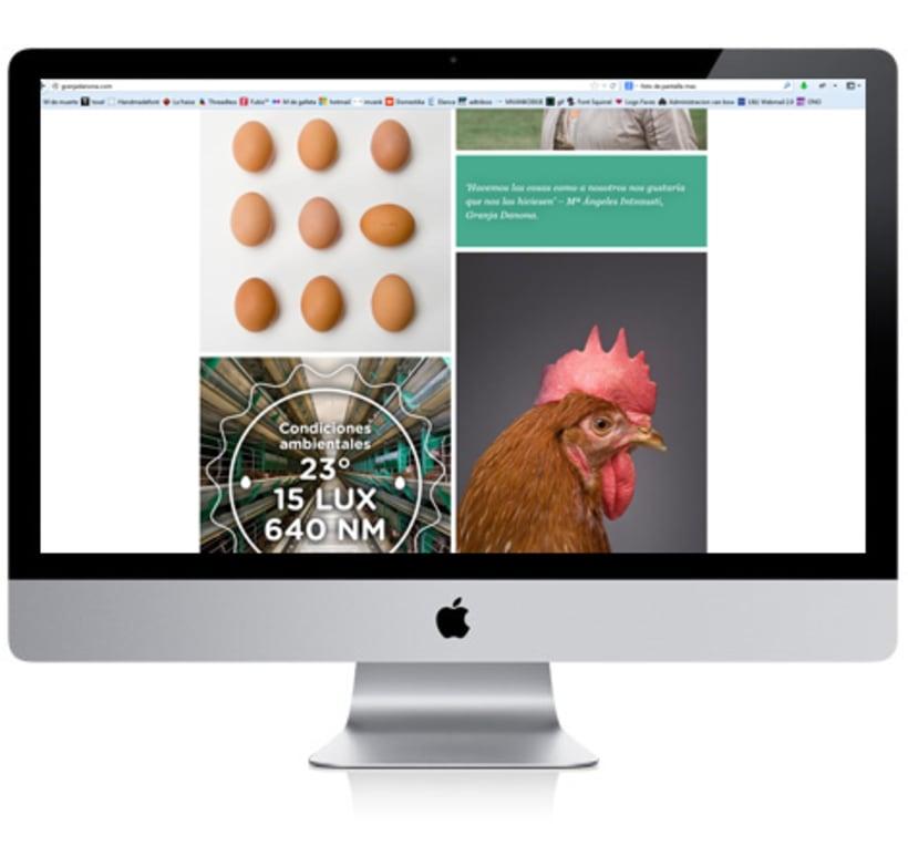 Danona Website 1